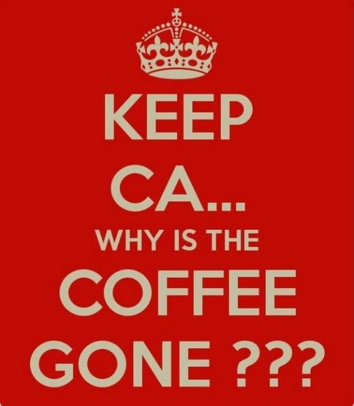 """Keep ca...Why is the coffee gone???"""