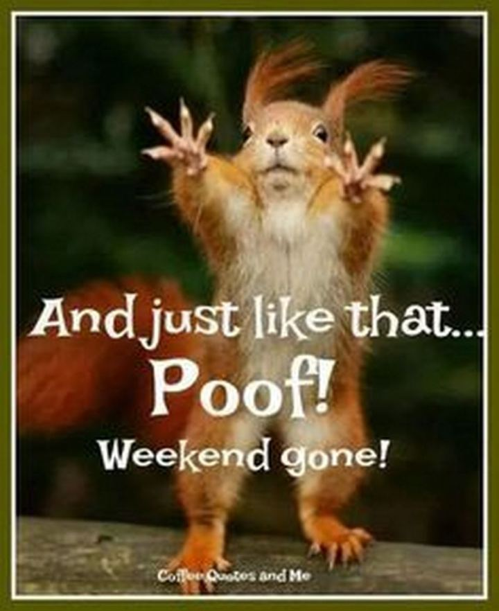 """And just like that...Poof! Weekend gone!"