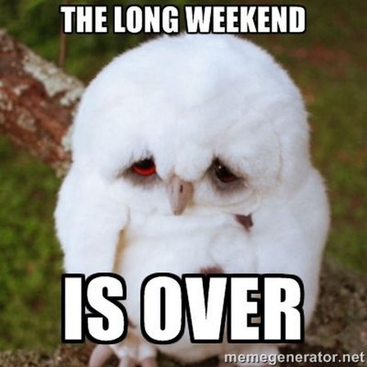"""The long weekend is over."""
