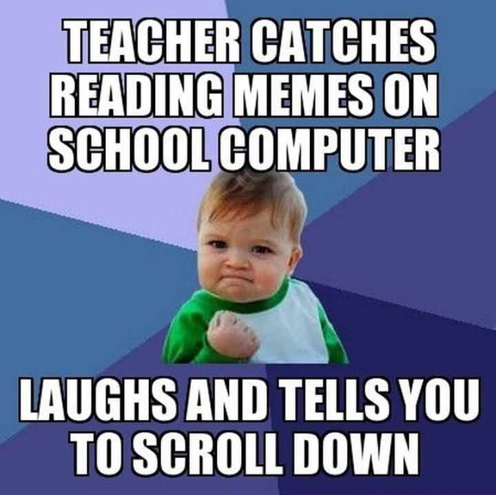 """""""Teacher catches reading memes on a school computer. Laughs and tells you to scroll down."""""""