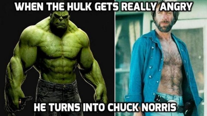 """When the Hulk gets really angry, he turns into Chuck Norris."""