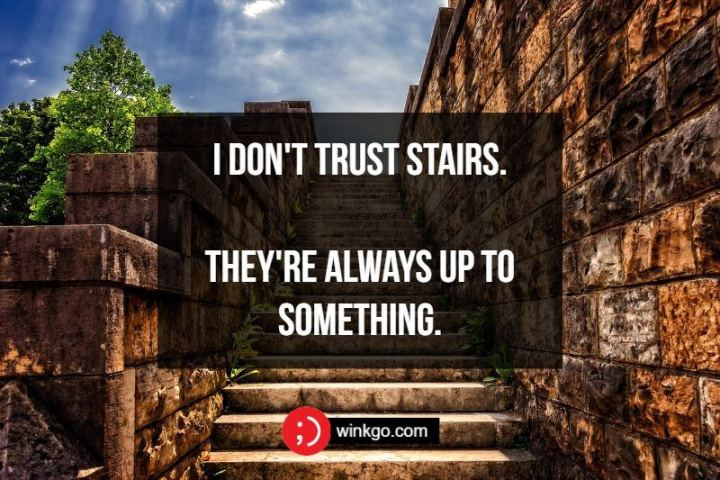71 Two-Line Funny Jokes - I don't trust stairs. They're always up to something.