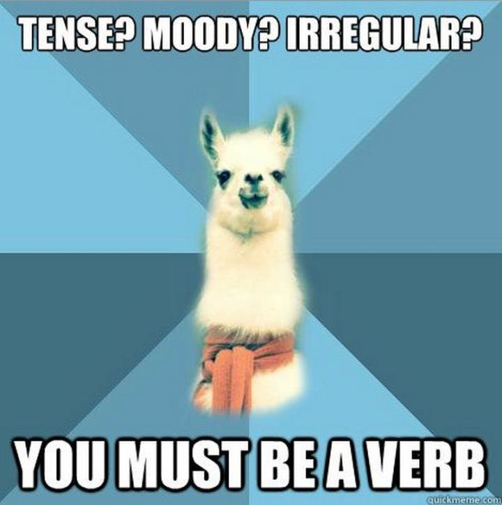 """Tense? Moody? Irregular? You must be a verb."""