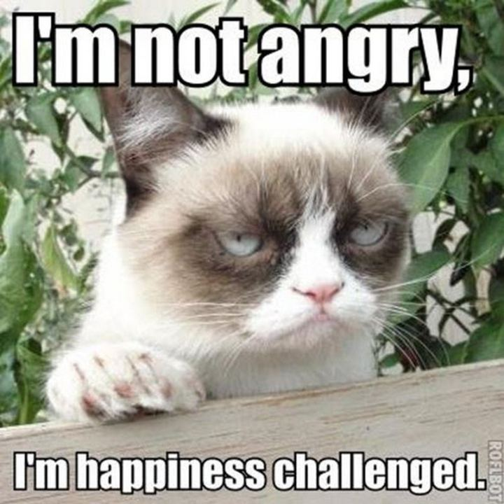 """I'm not angry, I'm happiness challenged."""