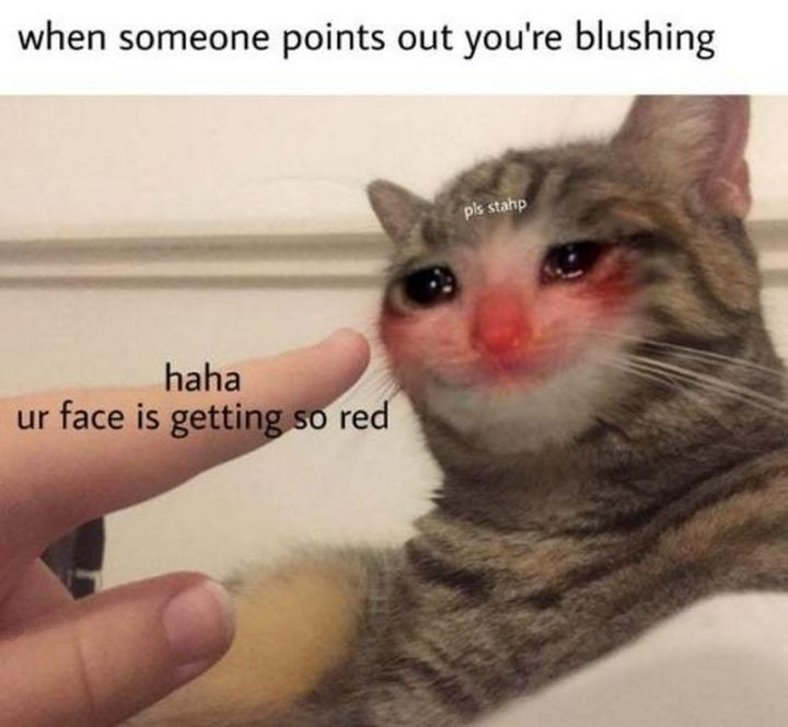 """When someone points out you're blushing: Haha, ur face is getting so red."""