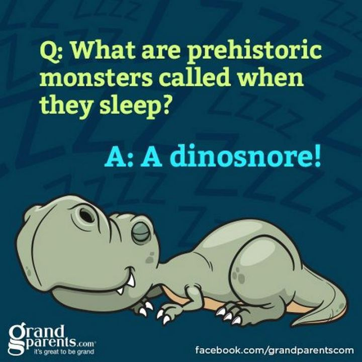87 Funny Jokes for Kids - What are prehistoric monsters called when they sleep? A dinosnore!