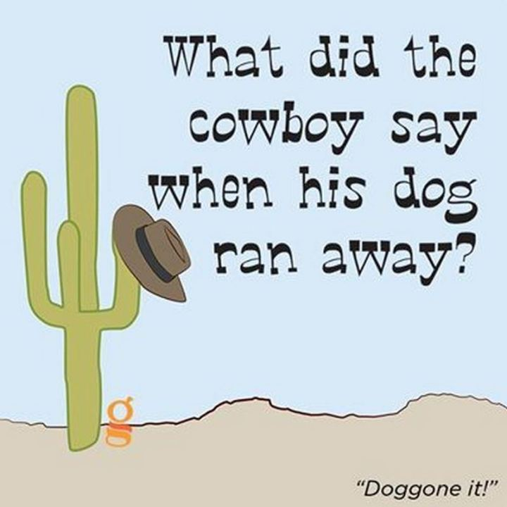 What did the cowboy say when his dog ran away? Doggone it!