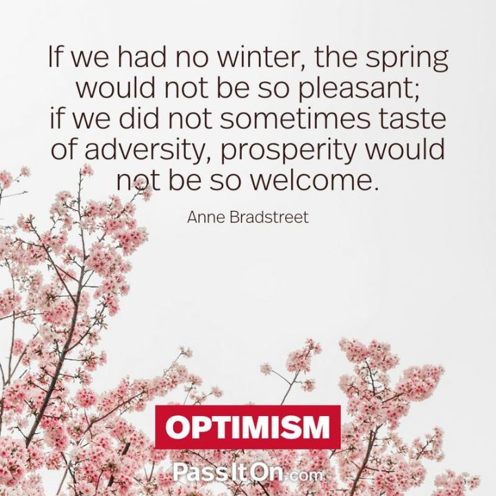 """If we had no winter, the spring would not be so pleasant: if we did not sometimes taste of adversity, prosperity would not be so welcome."" - Anne Bradstreet"