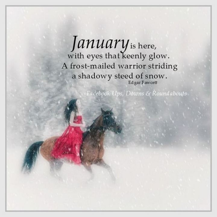 """January is here, with eyes that keenly glow, A frost-mailed warrior striding a shadowy steed of snow."" - Edgar Fawcett"