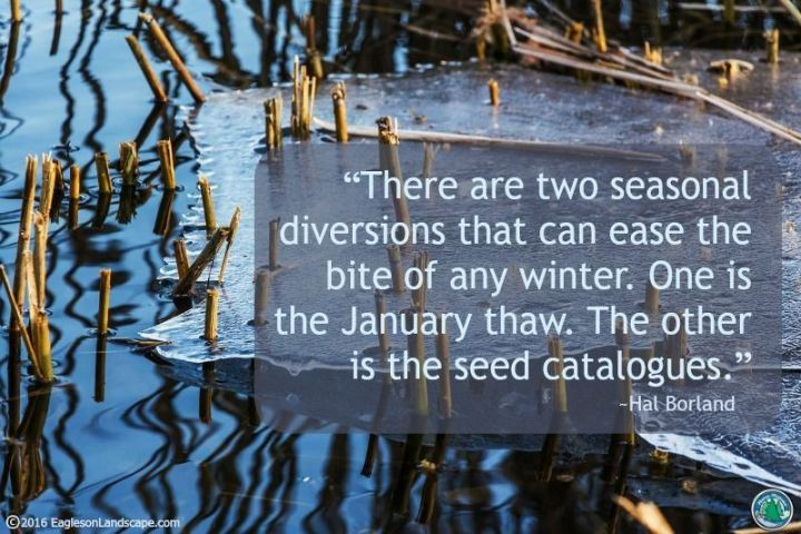 """There are two seasonal diversions that can ease the bite of any winter.  One is the January thaw.  The other is the seed catalogues."" - Hal Borland"