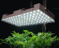 Grow light reflector On WinLights.com | Deluxe Interior ...