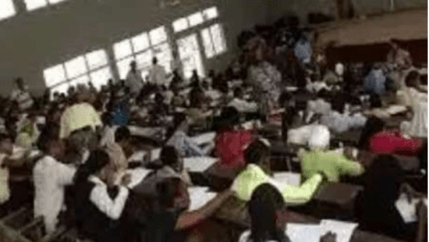 Photo of 9 Worst Curses To Study In The University