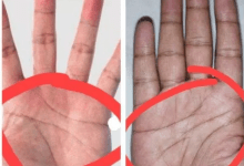 Photo of If You Have Three Lines On Your Palm Instead Of 4 – Here Is What It Means