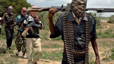 Bandits kill three and abduct 15 women in Niger state