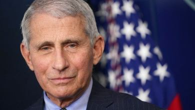 Fauci: Lack of facts 'likely did' cost lives in coronavirus fight