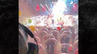 Flaming Lips Perform at Space Bubble Concert In Oklahoma City