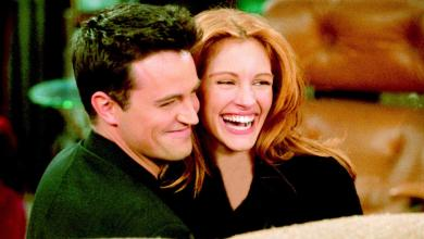 "Julia Roberts only appeared on 'Friends' because Matthew Perry wrote a ""paper on quantum physics"" for her"