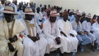 Miyetti Allah bans night, underage grazing in South West