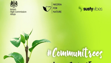SustyVibes, British High Commission partner to plant 5,000 trees in Lagos, FCT