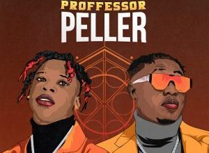 Seyi Vibez Ft. Zlatan – Professor Peller Mp3 Download Seyi Vibez new song Professor Peller feat Zlatan is out download mp3 free here