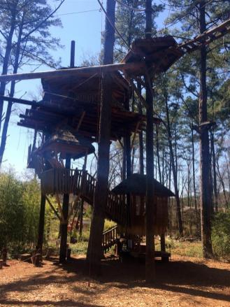 Treehouse~IMG_4349