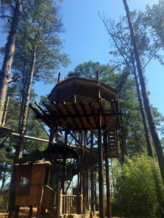 Treehouse~IMG_4350