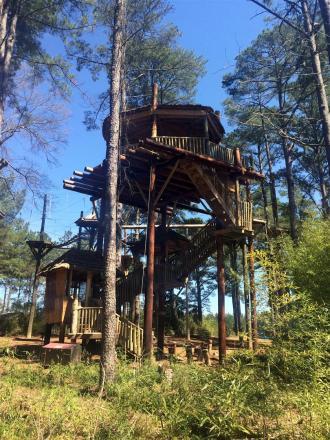 Treehouse~IMG_4351