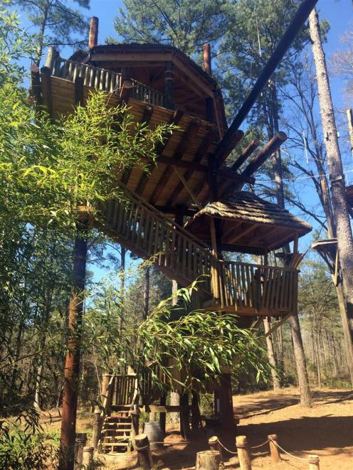 Treehouse~IMG_4352