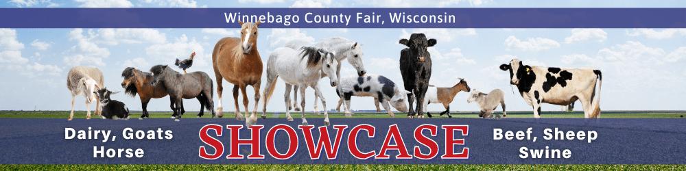 Winnebago County Fair, Wisconsin SHOWCASE: Dairy, Goats, Horse, Beef, Sheep, Swine