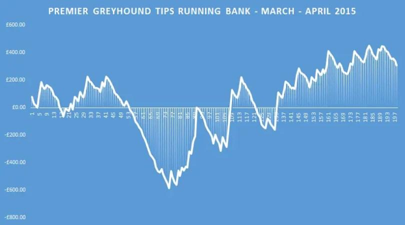 premier greyhound tips