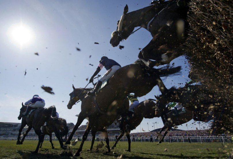 types of horse racing national hunt racing
