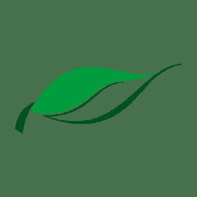 Winnies PureHealth Logo Favicon Transparent 512x512px