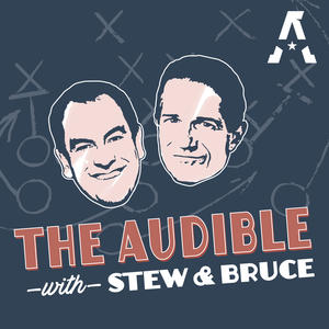 theaudible