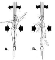 Championship Gymnastics: Biomechanical Techniques for
