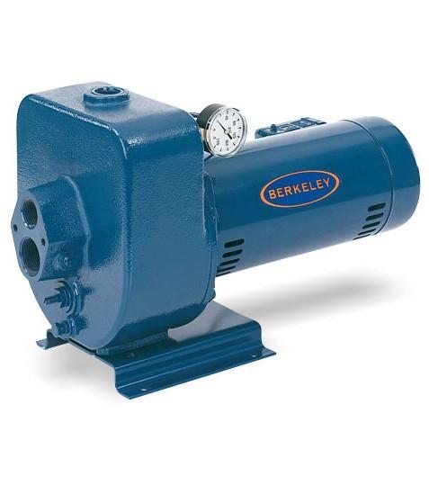 Berkeley LT2 Jet Pump - Jet Pumps - Residential Water ...