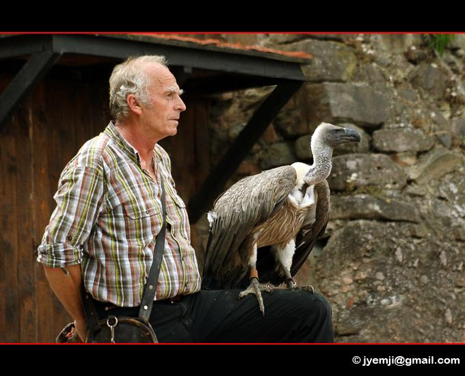 Photographies de la Volerie des Aigles de Kintzheim par © Hatuey Photographies