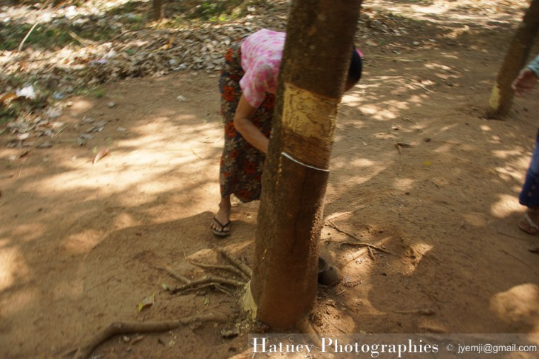 Myanmar Birmanie, Photographies 2015, Asie, Pegou,Bago, blog by © Hatuey Photographies