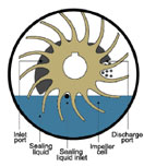Liquid Ring Vacuum Pump | Diagram How it Works