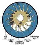 Liquid Ring Vacuum Pump | How it Works Diagram