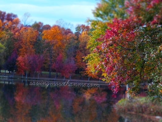 Fall in va winterandsparrow.com #Fallinva