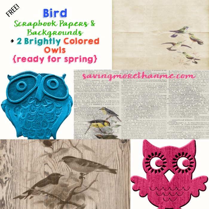 Bird Scrapbook Papers and Digital Owl Images winterandsparrow.com #free