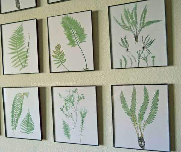 DIY Botanical Gallery Wall {Plus 4 Free Fern Prints} winterandsparrow.com