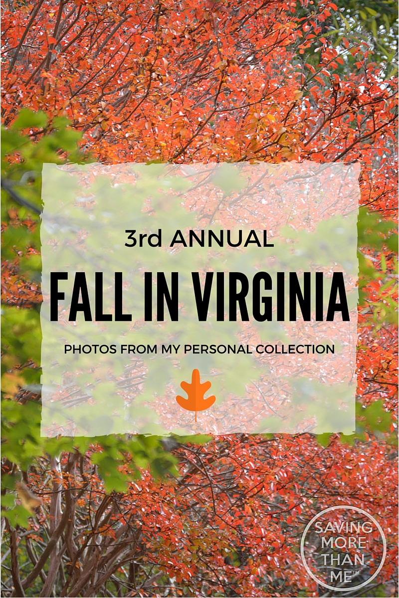 3rd Annual Fall In Virginia Photos #FallInVA