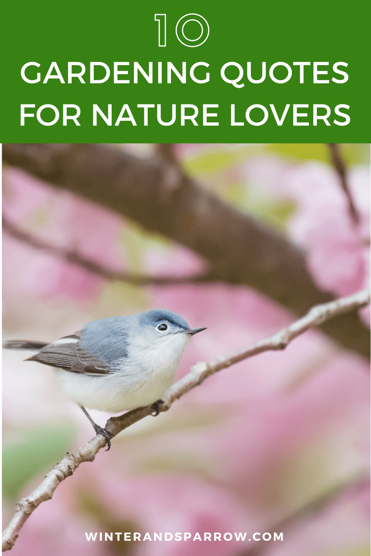 Ten Gardening Quotes For Nature Lovers