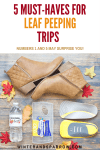 5 Must-Haves For Leaf Peeping Trips  (Numbers 1 + 5 May Surprise You)