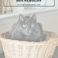 3 Key Organizational Tips For Multi-Pet Households  #ad  #TidyTreatment @purina