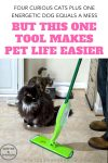 Four Curious Cats + One Energetic Dog = A Mess But This One Tool Makes Pet Life Easier #ad #CelebratePetsWithLibman