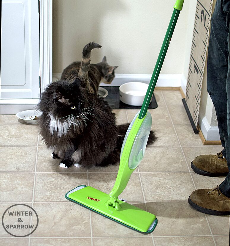 Four Curious Cats + One Energetic Dog = A Mess But This One Tool Makes Pet Life Easier #ad #CelebratePetsWithLibman | winterandsparrow.com