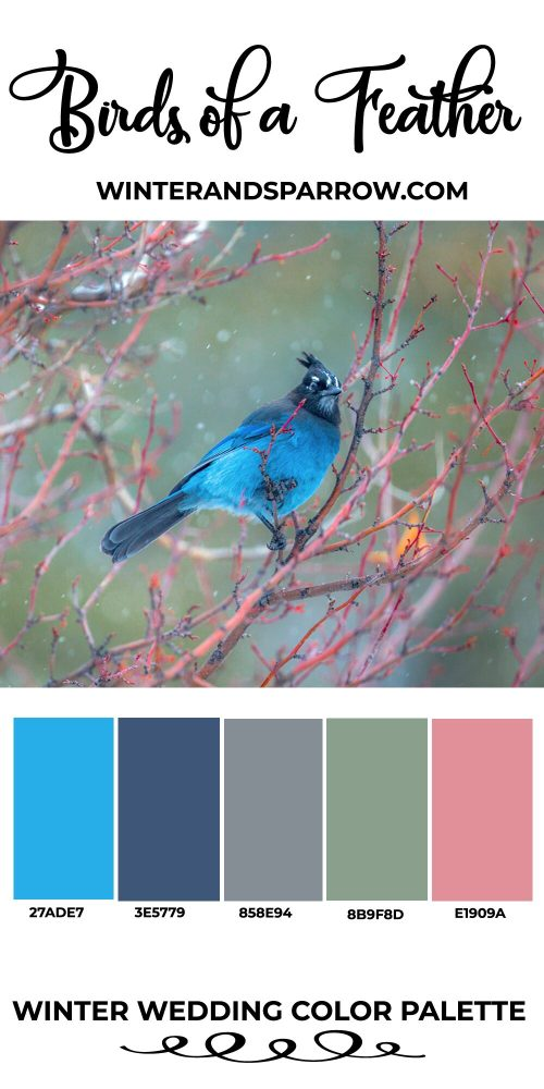 Winter Wedding Colors: Palettes Inspired By Nature | winterandsparrow.com #winterwedding #weddingcolors #weddingideas