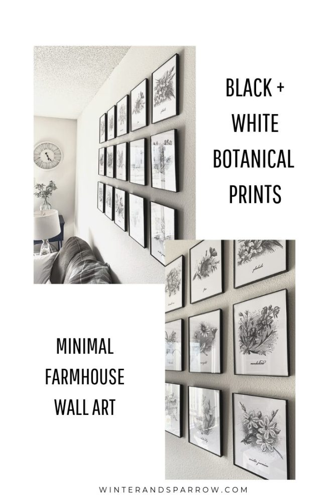 15 Minimal, Farmhouse Black and White Botanical Prints | winterandsparrow.com #freebotanicalprints #farmhousebotanicalprints #farmhousewallart #freebotanicalillustrations #farmhousedecor